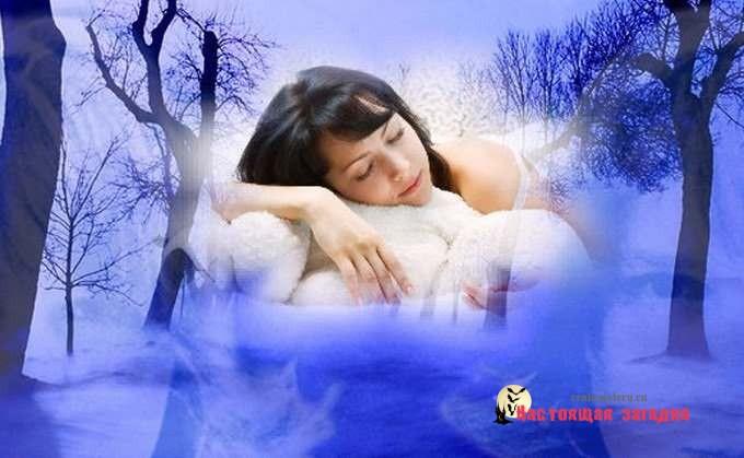 Путешествие во сне
